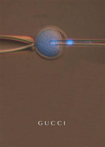 Michael Marcovici – Gucci